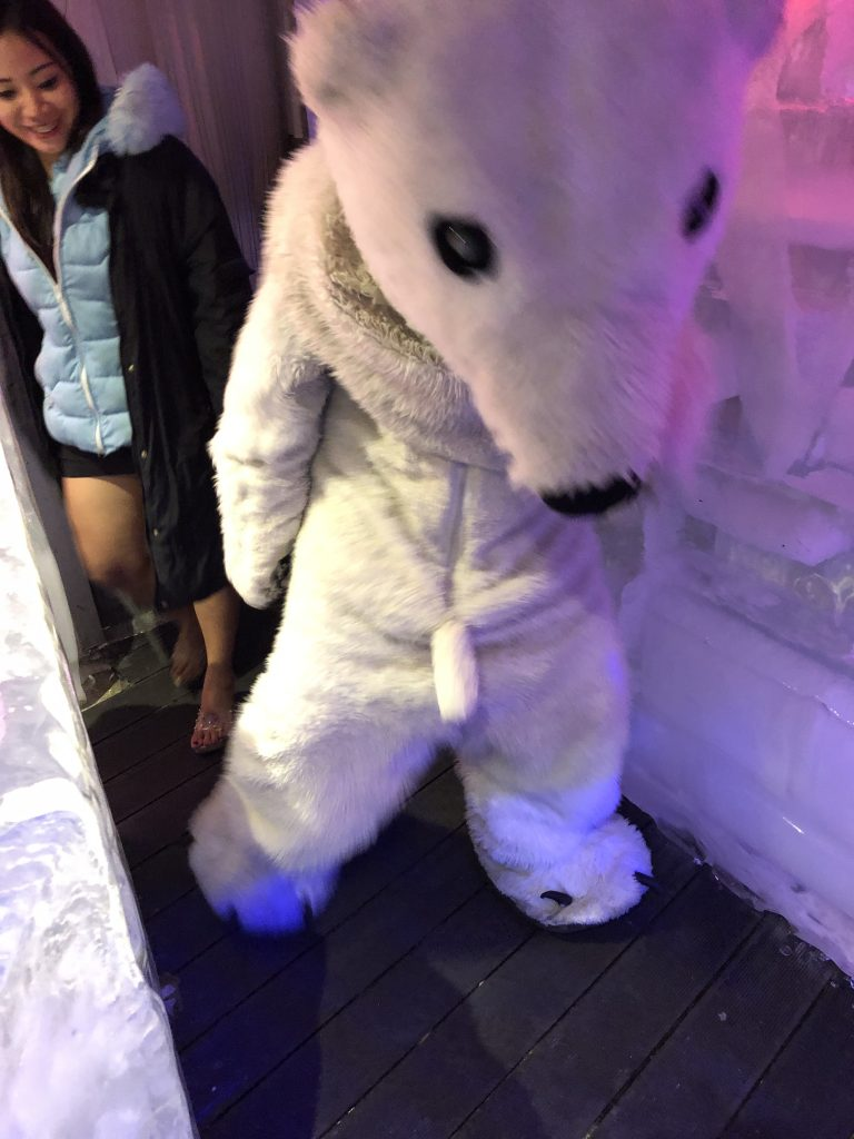 The Ice Bar Mascot